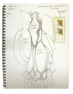 cr-4mm-sketchbook