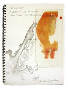 cr-220-sketchbook-